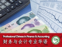 Professional Chinese in Finance and Accounting